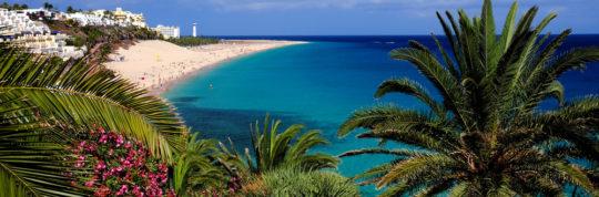Sport, mare e buona cucina: anche questo è Fuerteventura