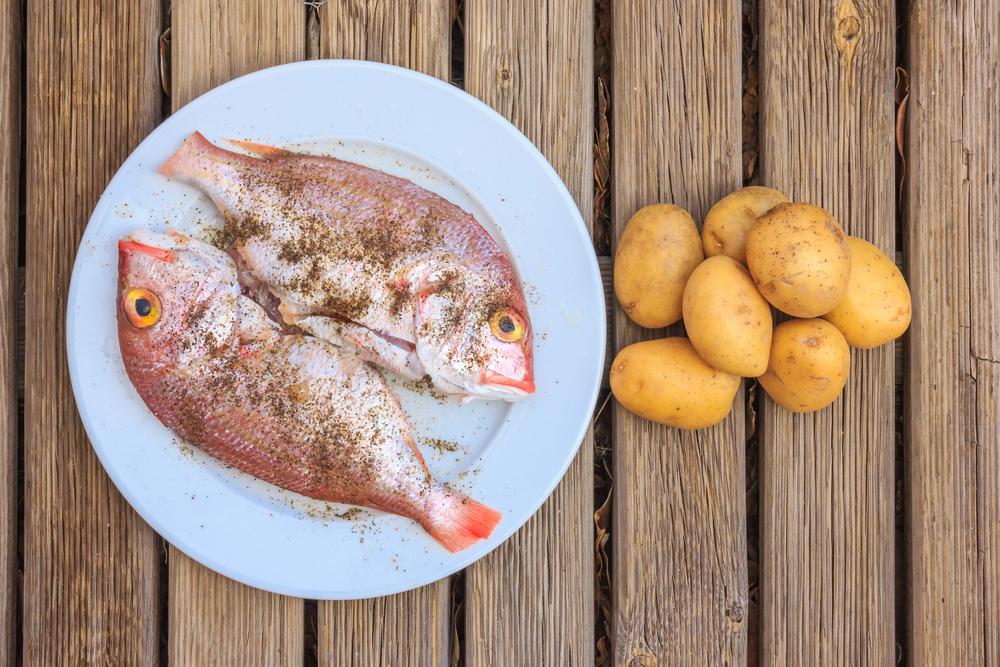 canarie pesce